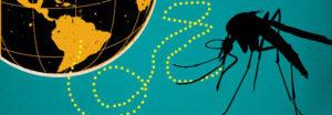 ซิกา-(Zika)-เชื้อไวรัสทั่วไปและการป้องกันจากการติดเชื้อ---feat