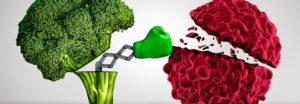 7-เคล็ดลับลดความเสี่ยงโรคมะเร็งง่ายๆ-ที่ใครก็สามารถทำได้----feat